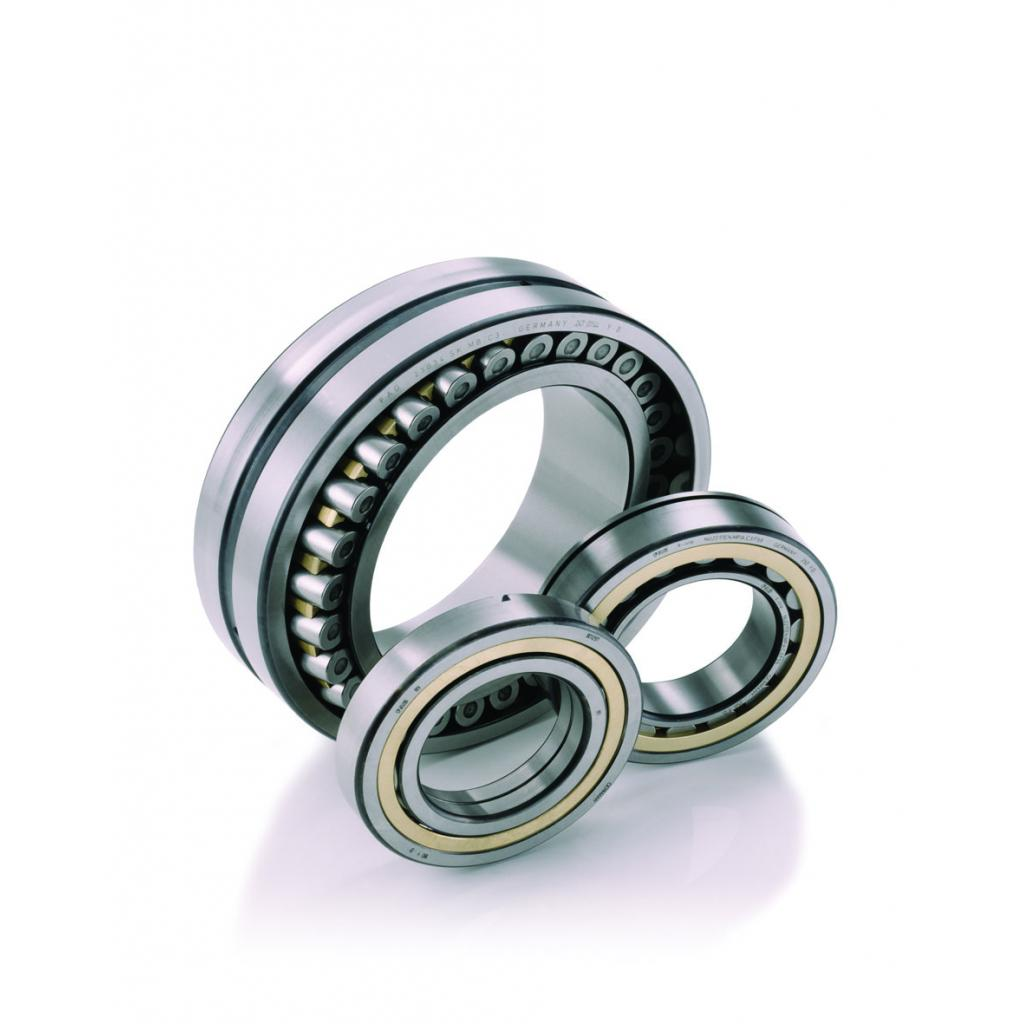 Single & double row cylindrical roller bearings